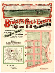 M1593 - Bingles Hill Estate Subdivision Plan, Tighes Hill, Newcastle, Saturday August 9th, 1902. (Cultural Collections, University of Newcastle) Tags: australia nsw newsouthwales elizabethst kingsroad queensroad georgest johnst margaretst henryst hunterregion governmentroad landsales tigheshill subdivisionplans afhall bingleroad bingleshill bingleshill northumberlandpermanentbuildinginvestmentlandandloansociety langwoodandco