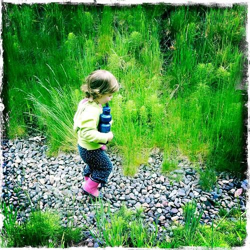 Mira Stone Walking