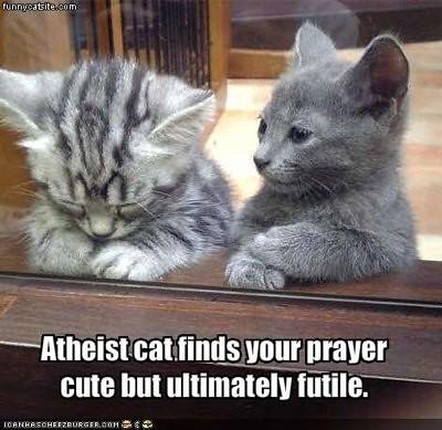Atheist Kitty