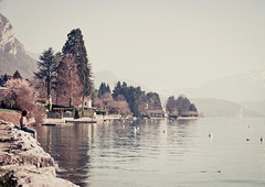 Canap de luxe (Camille_Ferry) Tags: annecy nature ferry lac lecture camille paisible