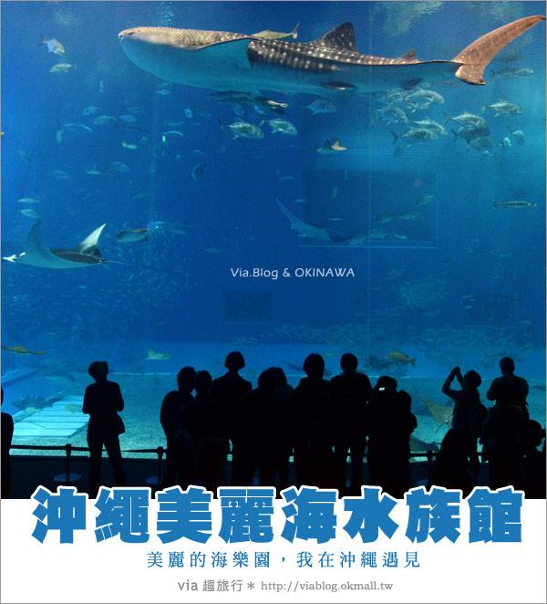 【沖繩景點】美麗海水族館~帶你欣賞美麗又浪漫的海底世界!