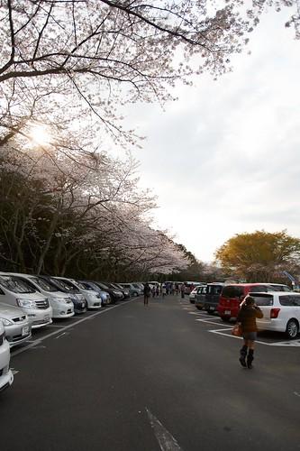 家族で日本平動物園  270