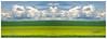 Yellow, Green and Blue (mircoLITRATO) Tags: sky canada calgary clouds skies alberta saskatoon fields mirco adrielle