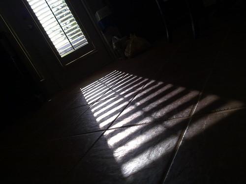 Sladder on the floor