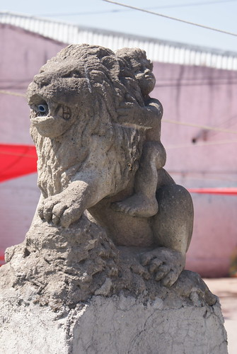 El niño y el león by FotoMimo