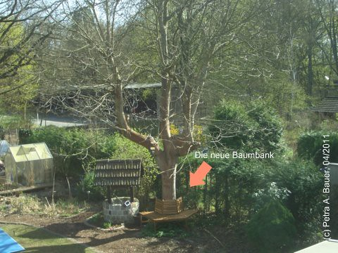 Die neue Baumbank