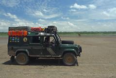 Landy at Lake Ndutu 2