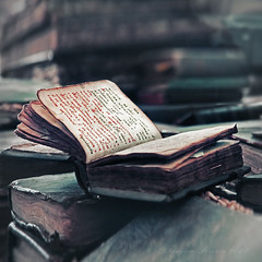 Wingspread Prayer. Old Books. (Tanjica Perovic) Tags: old stilllife art church vintage square photography words ancient worship fotograf photographer artistic god pages bokeh antique faith prayer serbia religion tranquility atmosphere naturallight books christian squareformat soul classical christianity spirituality wisdom tradition orthodox soulful atmospheric orthodoxchristian mystic oldbooks srbija prayerbook openbook orthodoxchristianity  oldchurchslavonic srpski  fotografija  canoneos400d sigma1770mmf2845dcmacro   orthodox  tanjicaperovicphotography