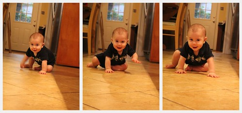 crawling collage