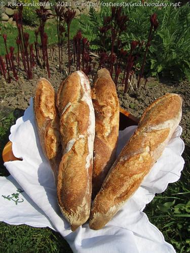 4 Baguettes nach Anis Bouabsa