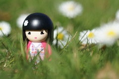 Newest member of the gang :) (**Alice**) Tags: flowers grass denmark 50mm bokeh ella mimi mia emmi flori sonderborg digitalcameraclub iarb etsumi kimmidoll sony450