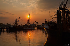 Sunrise in the Harbor Stellendam (BraCom (Bram)) Tags: trees haven reflection clouds sailboat port sunrise harbor bomen harbour ships wolken bow mast fishingboats nets stellendam zeilboot goereeoverflakkee schepen spiegeling netten masten zonsopkomst boeg bracom mygearandme mygearandmepremium mygearandmebronze