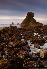 Biome Rising (Goldpaint Photography) Tags: ocean sea usa moon reflection beach water clouds oregon sunrise coast rocks pacific lowtide algae reef monolith brookings goldpaintphotography