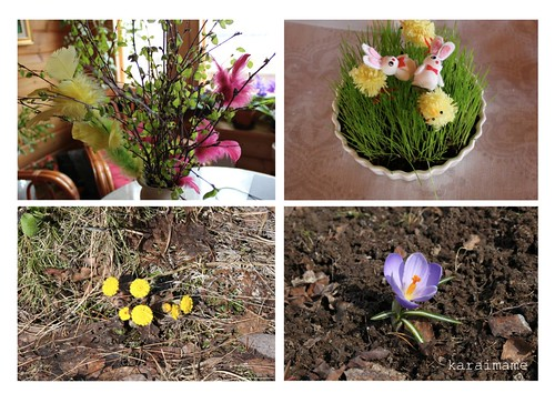 Easter decorations and first spring flowers