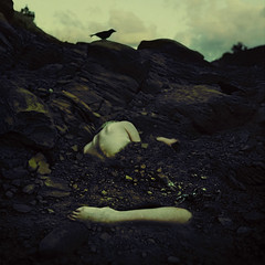 the fossils we leave behind (brookeshaden) Tags: storm bird rock flesh fossil death alone skin dirt struggle brookeshaden texturebylesbrumes