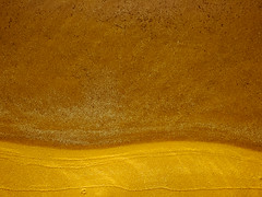IMG_0182.jpg (Pinox67) Tags: brown abstract beach sand vieste