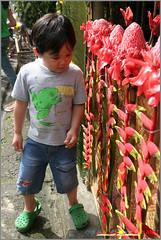 Pahiyas in Lucban, Quezon-30 (OURAWESOMEPLANET: PHILS #1 FOOD AND TRAVEL BLOG) Tags: pahiyas quezon lucban sanisidrolabrador sariayaya