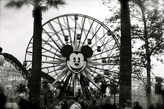 Framed (Kirsten Marie Hutton) Tags: blackwhite disney mickeymouse californiaadventure funwheel