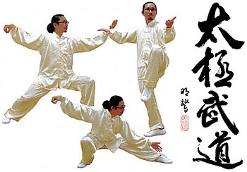 Course Content: Chen Style Tai Chi Laojia (Old Frame), Xinjia (New Frame),  Pushing Hands, Tai Chi Applications And Self Defense