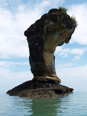Cobra sea stack