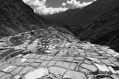 Salineras de Maras (lucholeco) Tags: peru cuzco canon cusco urubamba