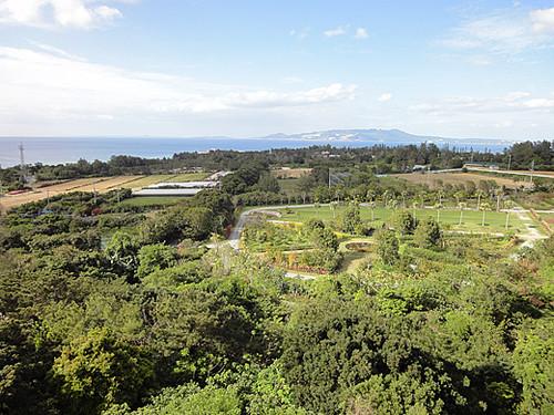 Okinawa_4_2