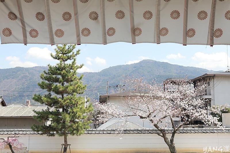 京都-隨心院、勧修寺