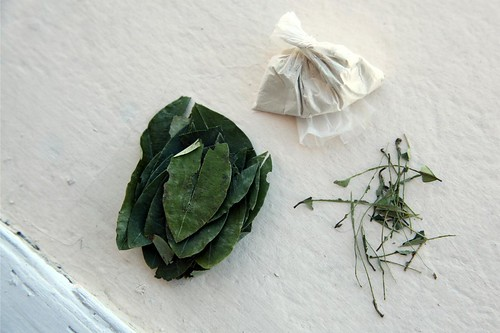 Leaves, Stems, and Quinoa Ash
