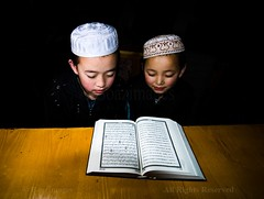 STUDYING THE QURAN (BoazImages) Tags: life china boys reading muslim islam religion culture documentary indoors study silkroad muslims tradition studying hui province islamic gansu quran holybook madressa supershot abigfave boazimages madrash