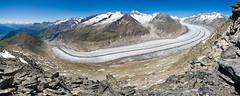 Aletsch galcier (n1r3) Tags: canon schweiz switzerland suisse unesco glacier wallis valais aletsch 1740l eggishorn worldnatureheritage europeanlonguestglacier
