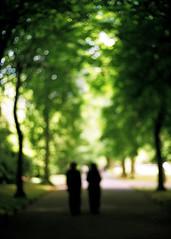 nice dream. (solecism) Tags: park ireland dublin green film kodak bokeh walk gsn portra yashica ststephensgreen electro35 alackoffocus radioheadnicedream