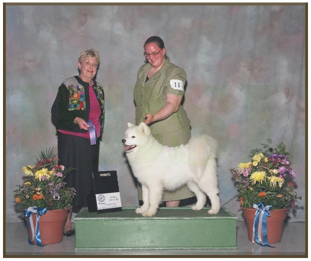 Mendel, Winners Dog, Oshkosh, May 2011