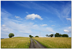Road to the Clouds (Sebastian.Schneider) Tags: blue trees sky cloud tree nature clouds germany landscape deutschland scenery skies hessen cloudy outdoor natur himmel wolke wolken blueskies landschaft bume baum wolkig westerwald erdbach ldk drausen medenbach lahndillkreis amdorf lahndill mygearandme mygearandmepremium mygearandmebronze ringexcellence