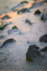 Way to the sunset (wind of renovatio) Tags: sunset france spring bokeh stones ngc ground clay normandie normandy  montsaintmichel saintmichaelsmount  lemontstmichel  canonef50mmf14   flickraward   canon550d ringexcellence artistoftheyearlevel3 windofrenovatio