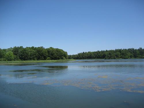 Landon Bay
