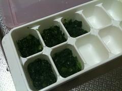 離乳食キューブ作り。小松菜。少ししかできないんだよな。(6/30)