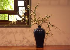 Metropolitan Museum (bobdig986) Tags: nyc newyorkcity metropolitanmuseum vase stilllife