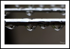 Gotas (Doenjo) Tags: metal lluvia agua gotas lmdd
