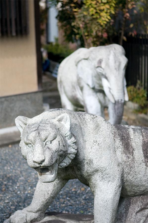 虎の像|京都市右京区