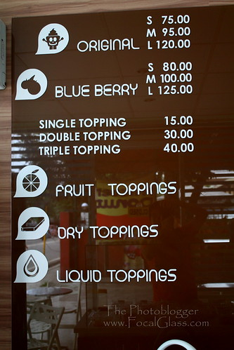 Blueberry Froyo Menu