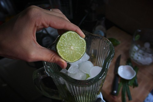 ice, water, agave & lime