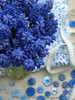 Blue Grape Hyacinths (Of Spring and Summer) Tags: flowers blue stilllife inspiration flower art home nature bulb vintage garden photography ribbons antique buttons creative fabric stems vase bulbs romantic ribbon antiques tablecloth bluewhite vases fabrics muscari tablecloths grapehyacinth shabbychic ofspringandsummer prettystems