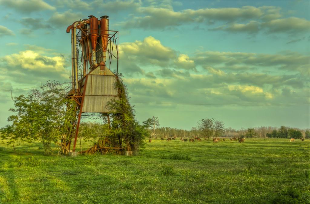 Mill Horses