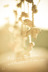 Passion (Chrisseee) Tags: travel light shells canon thailand asia bokeh quote decorative pastel card passion lightgreen succes kristiinahillerstrm chrisseee lightrosa