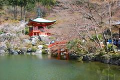 DSC_0579 (yhshangkuan) Tags: japan spring kyoto blossom bloom  cherryblossom sakura  fullbloom  2011 daigoji