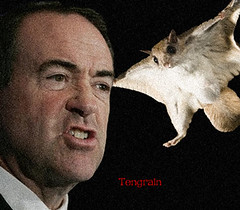 Huckabee-and-the-Squirrel