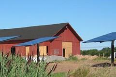 Singer Farm Naturals - Appleton, NY