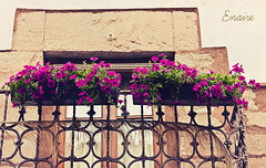 Balcón, piedra, flores