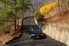 Spring (wmliu) Tags: usa home car mailbox us newjersey spring nj convertible driveway forsythia bmw wmliu
