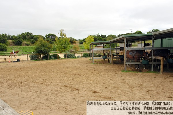Gunnamatta Equestrian Centre, Mornington Peninsular-8
